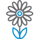 flower, blossom, decoration, plant, garden icon