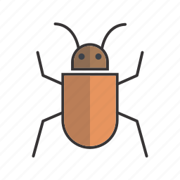 bug, insect, seo, virus icon
