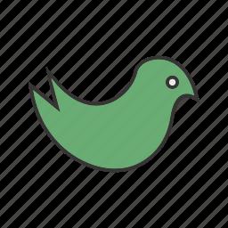 cuite bird, seo, social icon