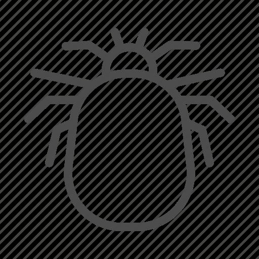 Flea, insect, parasite, pest, bite, blood, bug icon - Download on Iconfinder