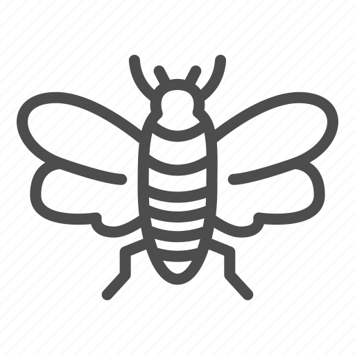 Insect, fly, bee, wild, bug, midge, wing icon - Download on Iconfinder