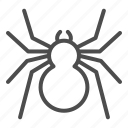 spider, danger, arachnid, scary, horror, poisonous, antennae