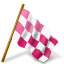 chequeredflag, mapmarker, pink, right icon