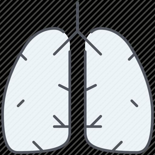anatomy, breathe, lungs, organ, pulmonology, respiratory icon
