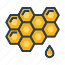 bee, honey, honeycomb, sweet icon