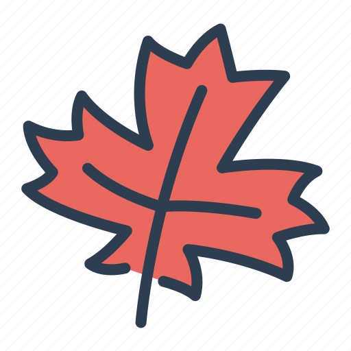 autumn, ecology, fall, forest, leaf, nature, plant icon