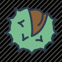 autumn, harvest, marron, nut, plant, seed, сhestnut icon