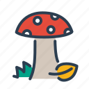 amanita, autumn, food, forest, mushroom, poison, vegetable icon