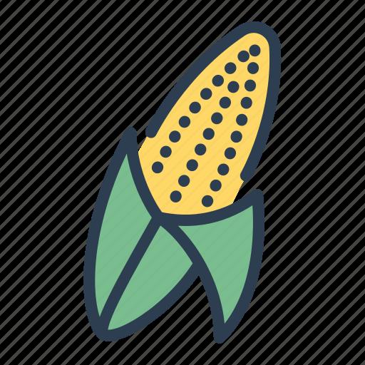 autumn, corn, corncob, food, harvest, plant, vegetable icon