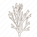 elements, floral, flower, forest, nature, sign, tre