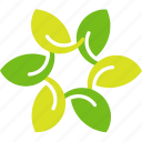 flowre, leaves, petals icon
