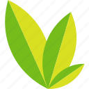 ecology, green, leaves, plant icon