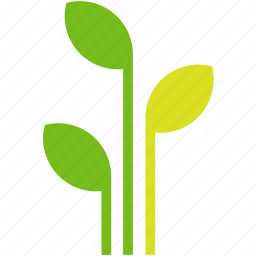 ecology, flower, growing, growth, leaves, plant icon