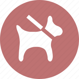dog, protection, safe, security icon