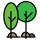 ecology, forest, nature, outdoor, trees icon