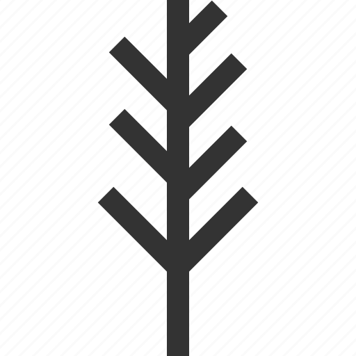 leaf, nature, plant, tree icon