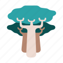 africa, african, baibab tree, ecology, madagascar, nature, tree icon