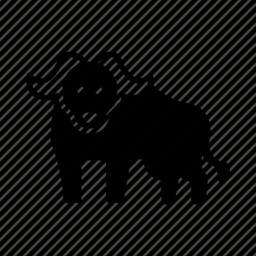 Africa, animal, bison, buffalo, bull, wild, wildlife icon - Download on Iconfinder