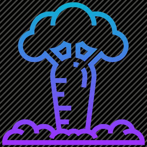 africa, baobab, landmark, tree icon