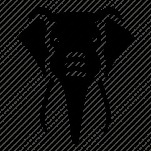 africa, animal, elephant, head icon