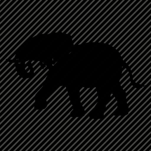 elefante, elephant, zoo icon