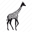 girafa, giraffe, zoo icon
