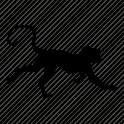 monkey, mono, zoo icon