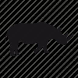 rhino, rhinoceros, zoo icon