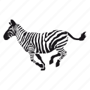 cebra, zebra, zoo icon