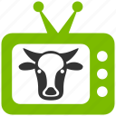 agriculture, animal, animals, bull, cow, farm, farming, monitor, screen, television, tv icon