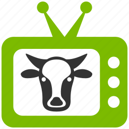 agriculture, animal, animals, bull, cow, farm, farming, monitor, screen, television, tv icon