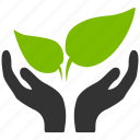 spring, startup, agriculture, support, health, plant, seed, new project, start business icon