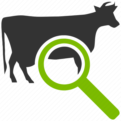 agriculture, analysis, animal, animals, audit, bull, business, camera, check, control, cow, explore, explorer, eye, farm, farming, financial, find, glass, look, magnifier, magnifying glass, navigation, report, research, search, seo, tool, view, zoom icon