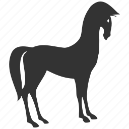 animal, animals, horse, mustang, race, ride, riding, sport, tote icon