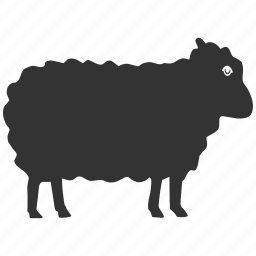 agriculture, animal, animals, domestic, farm, farming, lamb, ram, sheep, veterinary, village, wool, zoo icon