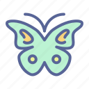 butterfly, monarch, moth, serenity icon