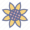 flower, spring, sunflower