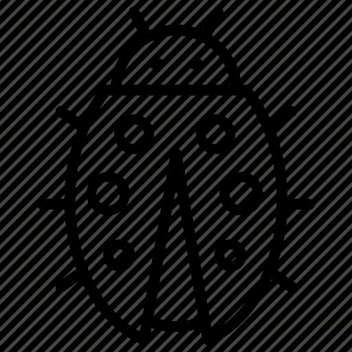 Ladybug, bug, insect icon - Download on Iconfinder