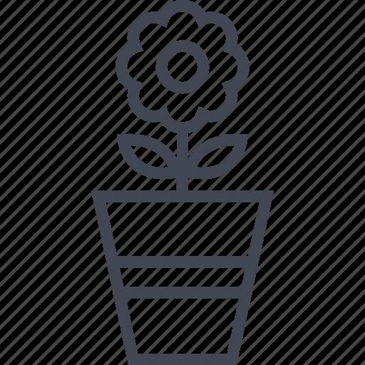 base, beutiful, flower, nature, plant icon