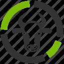 bull chart, cow diagram, graph, livestock, report, reports, statistics icon