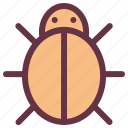 agriculture, bug, ecology, farm, insect, ladybug, nature