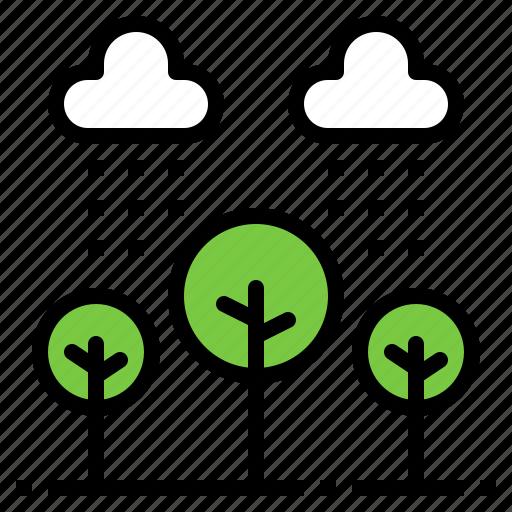 cloud, nature, plant, rain, tree icon