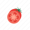 .svg, red, tomato, vegetable icon
