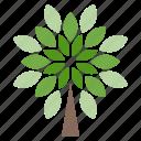 life, organic, plant, tree icon
