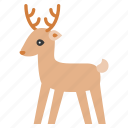 animal, cute, deer, reindeer icon