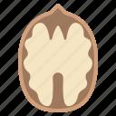 food, nut, snack, walnut icon