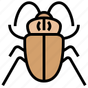 cockroach, dirty, disease, insect, pests icon