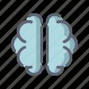 brain, idea, intelligence, mind