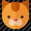 cat, animal, pet, zoo, cute, animals, mammal