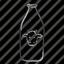 beverage, bottle, cow milk, dairy, drink, milk